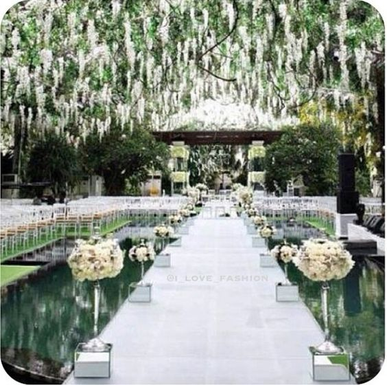 Elegant and sophisticated wedding entrance