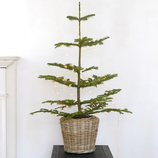 Minimalist Christmas tree in a basket
