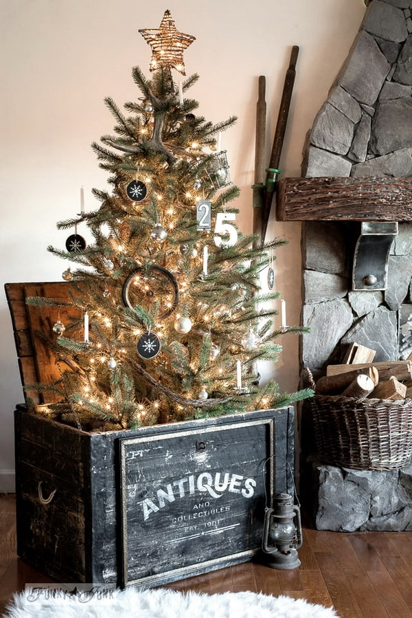Christmas trees in wooden boxes