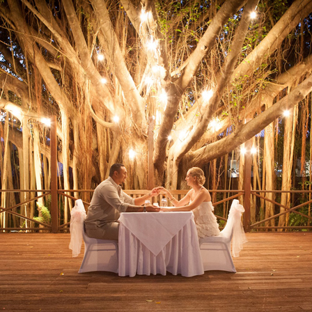 Mini wedding: rustic decoration with lighted tree