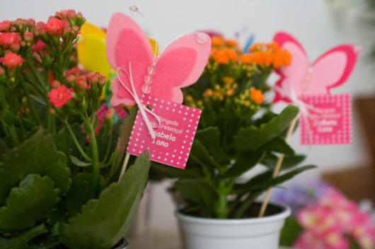 butterfly souvenirs with plant