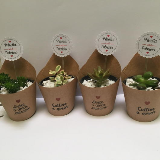 Beautiful personalized pots with small cacti or succulents