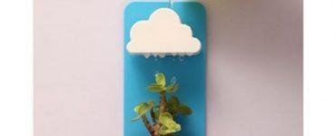 Creative Unisex Cactus Gift