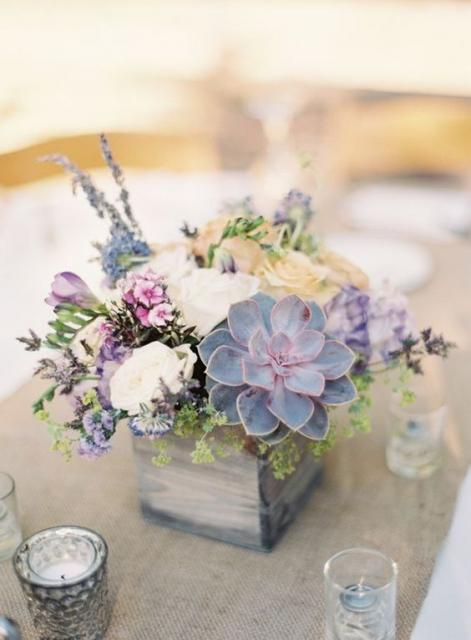 Arrangement of succulents in the center of the table.